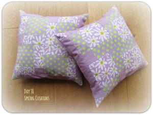 Day38_SpringCushions